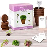 Microgreens Seed Growing Kit - 4 Micro Greens to Grow & Sprout : Basil, Arugula, Beets & Swiss Chards. Vegetables Sprouter Set W/ Organic Seeds, Planting Pots, Soil Mix, Plant Markers & Guide. NON-GMO