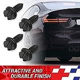 Rustproof Black License Plate Screws for Securing