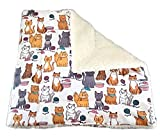 Sherpa Cat Blanket with Catnip - 17'' x 17'' - Playful Cats