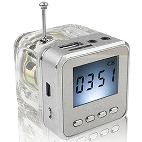 Haoponer Portable Mini Digital Display Screen Speaker USB Flash Drive Micro SD/TF Card Music MP3 Player FM Radio Silver