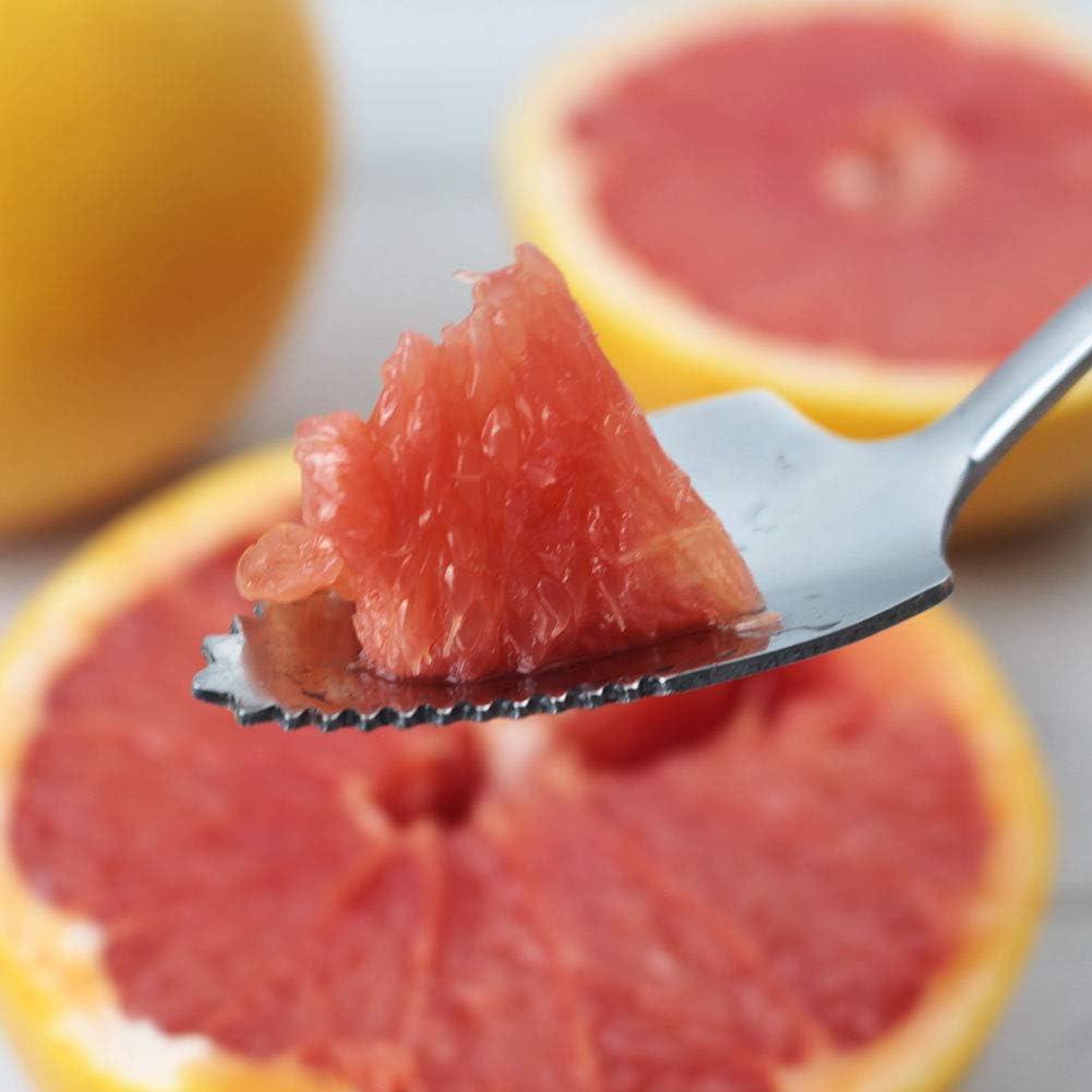 6 Pack Grapefruit Dessert Spoons Stainless Steel Half Serrated Citrus Fruit Vintage Dessert Spoons Gift for Kitchen Grapefruit Spoons /& Knive Sets