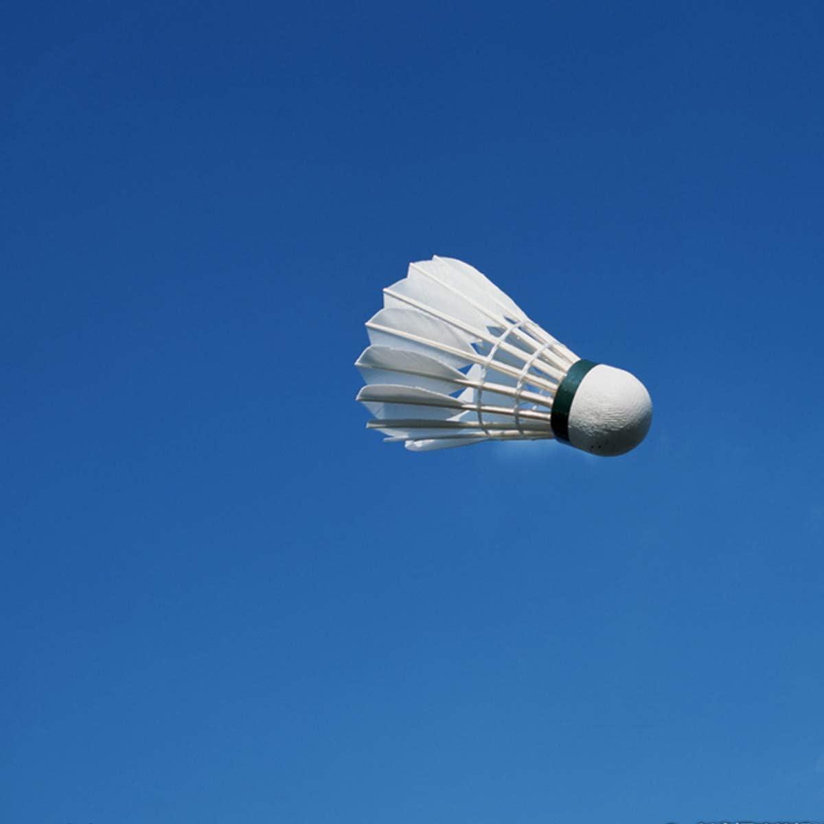 GN 12 Pcs Volant Badminton 77 Plumes de Canard