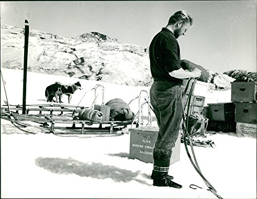 His Sled - Vintage photo of Man fixing the rope of the sled he39;s going to use to transport his belongings, sled dogs on the background.Taken - 2 Aug. 1962