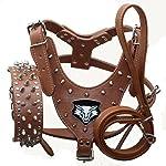 haoyueer Medium & Large Dog Leather Spiked Studded Dog Harness,Collar & Leash 3Pcs Set for Pit Bull,Mastiff, Boxer, Bull Terrier 13