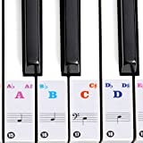 Dilwe Piano Sticker, Removable, Transparent Removable Piano KeyBoard Stickers for 61/88 Key Pianos (Colored)