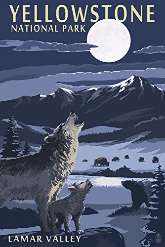 - Yellowstone National Park, Montana - Lamar Valley Scene (9x12 Art Print, Wall Decor Travel Poster)