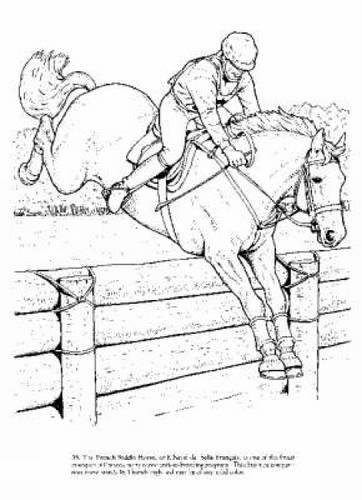 (Big Book of Horses to Color (Dover Nature Coloring Book))