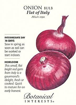 Flat of Italy Onion Seeds - 1 gram - Heirloom