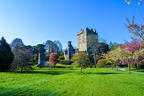 Blarney Castle - Photography Poster - Castle, Blarney, Ireland, Stone, 24