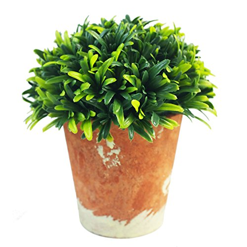 Nattol Mini 6.3 Inches Tall Lifelike Artificial Plant Potted in Rustic Style Whitewashed Paper Pulp Pot for Home Decor (Green,Large) (Tall Paper Pulp)