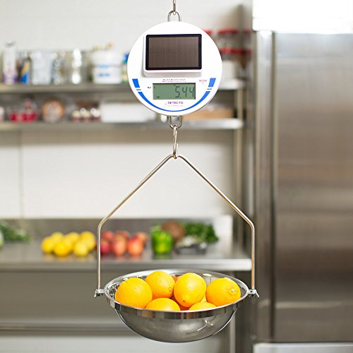 Cardinal Detecto SCS30 30 lb. Solar Power Hanging Scale, Legal for Trade by Cardinal