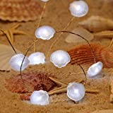 Impress Life Ocean Decor Fairy String Lights, Sea Shells Scallop Beach Series Copper Flexible Wire 10 ft 40 LEDs with Remote for Covered Outdoor, Summer, Seasonal, Wedding Parties Home Ornaments