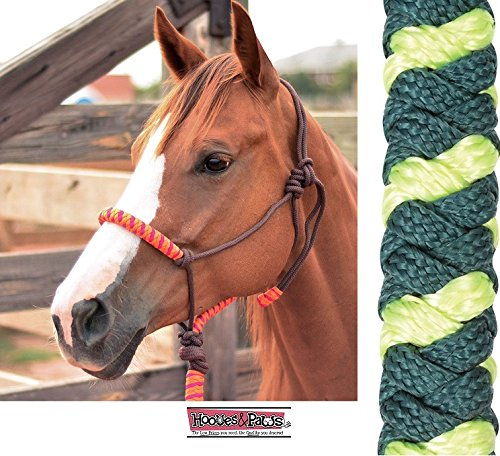 Classic Nylon Halters - CLASSIC Nylon Rope Halter with Lead and Popper Equine All (Lime-Teal)