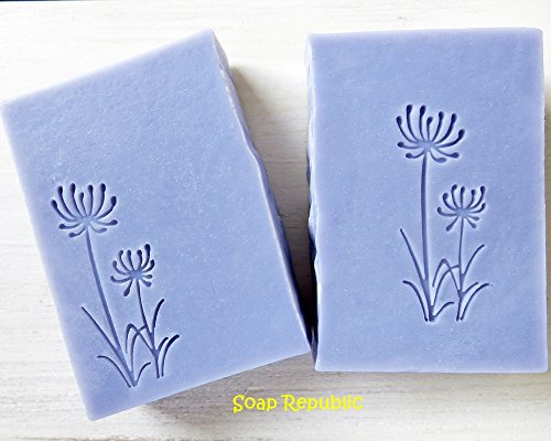 SoapRepublic 'Wild Flower Dandelions' 50x20mm Acrylic Soap Stamp / Cookie Stamp / Clay Stamp (20mm thick)