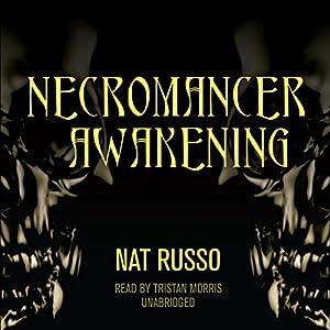 Necromancer Awakening Audiobook