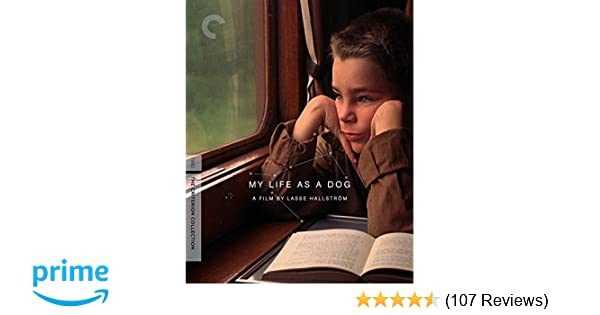Amazon com: My Life as a Dog (The Criterion Collection) [Blu-ray