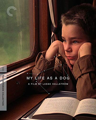 My Life as a Dog (The Criterion Collection) [Blu-ray] 1985 Hall Of Fame