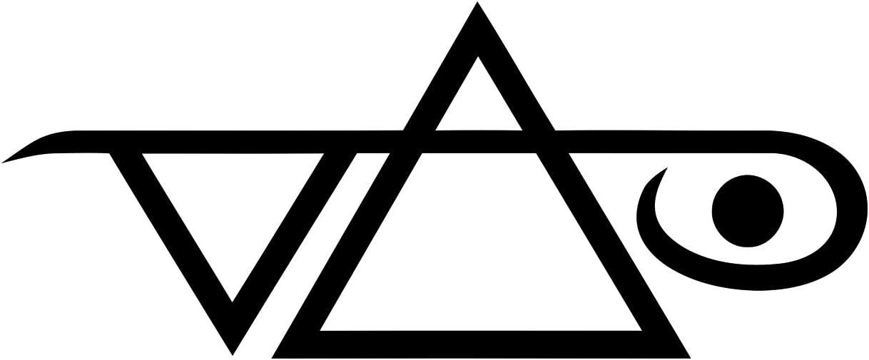 Steve Vai Logo – vinilo para coches, ventanas, paredes, portátiles, guitarras – Adhesivo: Amazon.es: Coche y moto