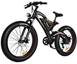 Addmotor Motan 750W Electric Bicycles 48V 11.6AH Battery Fat Tire Ebikes Mountain Snow Beach Full Suspension 2018 M-850 P7 Pedal Assist Electric Bikes+Fenders(Red)