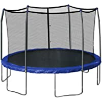 Skywalker Trampolines 15-Foot Round Trampoline with Safety Enclosure