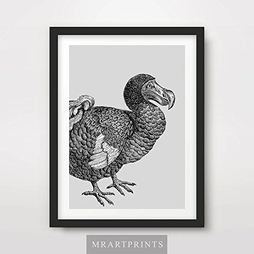 DODO BIRD BLACK AND WHITE ANIMAL ILLUSTRATION ART PRINT Poster Modern Home Decor Room Interior Design Wall Picture A4 A3 A2 (10 Size Options)