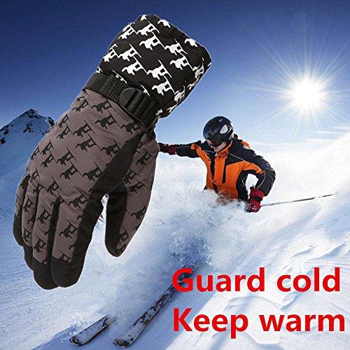 FidgetFidget Gloves for Outdoor Adult Winter Warm Waterproof Windproof Snow Snowboard Ski Sports Coffee by FidgetFidget