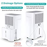 Kesnos 40 Pint Dehumidifier for Home and Basements