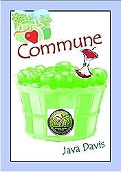 Commune: A Social Experiment