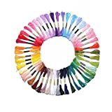iNee Embroidery Floss 50 Skeins Embroidery Thread, Six-Strand Cross Stitch Floss, Color Number on Each Skein Matching with DMC Thread Number, 50 Skeins per Pack
