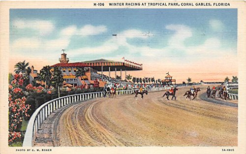 Winter Racing at Tropical Park Coral Gables, Florida, FL, USA Old Vintage Horse Racing Postcard Post - Gables Park Coral