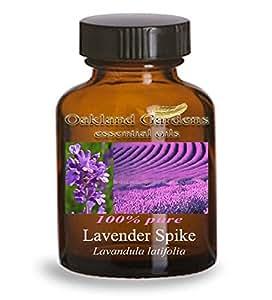 LAVENDER SPIKE Essential Oil (30 mL Euro Dropper) - 100% PURE Therapeutic Grade Essential Oil - Lavandula latifolia - Essential Oil By Oakland Gardens