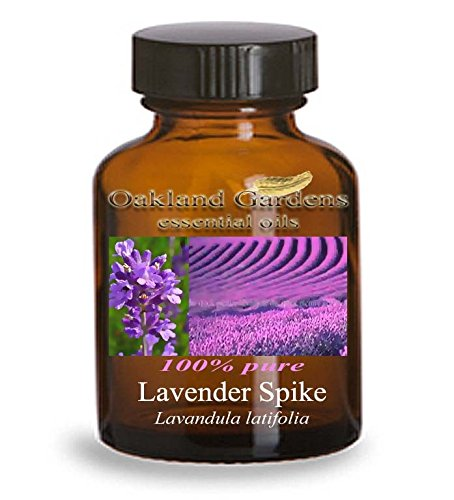 LAVENDER SPIKE Essential Oil (30 mL Euro Dropper) - 100% PURE Therapeutic Grade Essential Oil - Lavandula latifolia - Essential Oil By Oakland Gardens