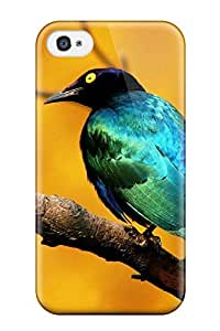 MeaganSCleveland Snap On Hard Case Cover Bird Protector For Iphone 4/4s