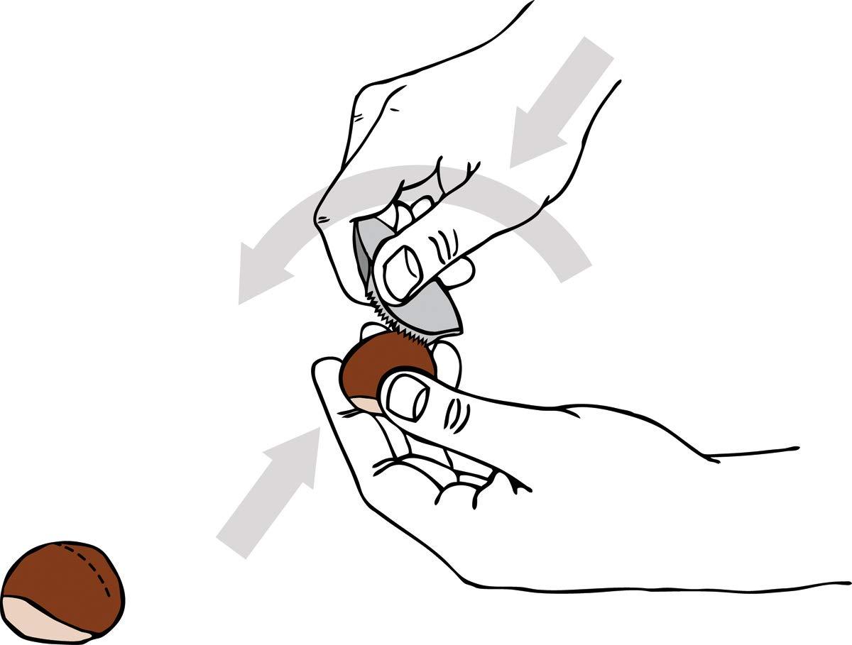 Set Sartén Riess Esmalte de castañas 26 cm y Jack de castañas Schnitzer de Take2 castañas Sartén Esmalte Sartén Schnitzer