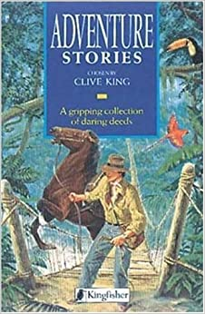 Book Adventure Stories (Story Library)