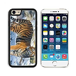 Tiger Standing In The Snow Apple iPhone 6 TPU Snap Cover Premium Aluminium Design Back Plate Case Customized Made to Order Support Ready Liil iPhone_6 Professional Case Touch Accessories Graphic Covers Designed Model Sleeve HD Template Wallpaper Photo Jacket Wifi Luxury Protector Wireless Cellphone Cell Phone