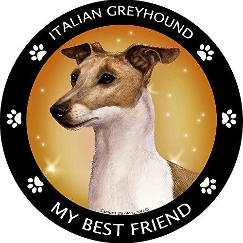 Tan Italian Greyhound My Best Friend Magnet