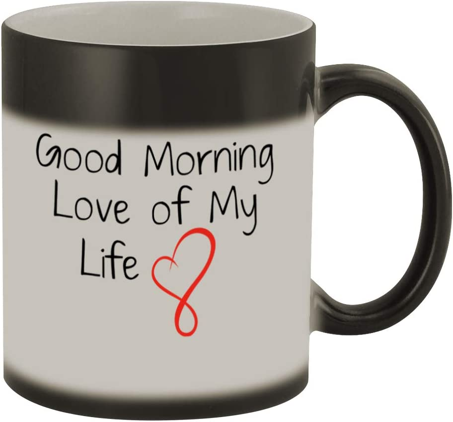 Good Morning Love of My Life #169 - Funny Humor Ceramic 11oz Magic Color Changing Coffee Mug Cup