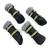 Alfie Pet by Petoga Couture - Drew All Weather Set of 4 Dog Boots/Sneakers - Color Grey, Size: XL
