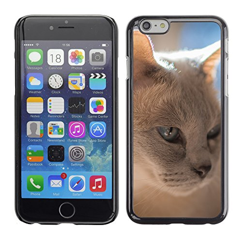 """Premio Sottile Slim Cassa Custodia Case Cover Shell // F00012055 chat // Apple iPhone 6 6S 6G 4.7"""""""