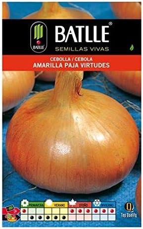 Semillas de Cebolla amarilla Paja Virtudes: Amazon.es: Jardín