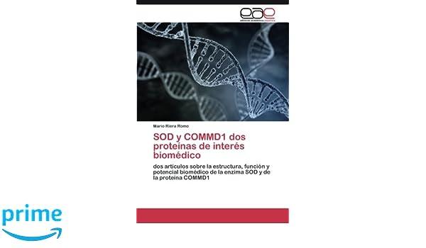SOD y COMMD1 dos proteínas de interés biomédico: dos ...