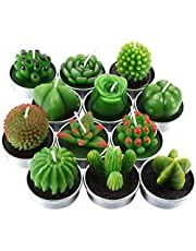 12 Pieces Cactus Tealight Candles Handmade Rose Succulent Cactus Candles for Teatime Party Wedding Spa Home Decoration Gifts