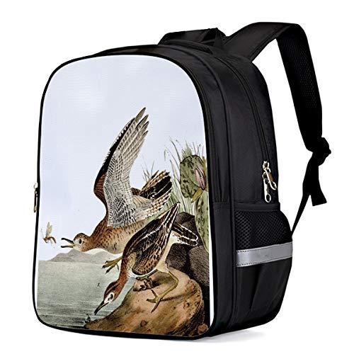 Water Resistant School Backpack, Freehand Bird Bartram