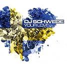 Your Love by DJ SCHWEDE
