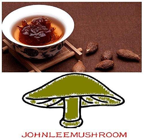 Herbal tea Sterculia Lychnophora good for protecting vocal health, the magic Pang Da Hai dried fruit 350 grams by JOHNLEEMUSHROOM RESELLER (Image #2)