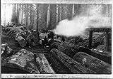 Photo: Vance's Logging Claim,steam engine,lumberjacks,c1890