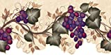 wall borders grapes - Brewster 418B268 Martex Special Places For Kitchen, Bedrooms, and Baths Grape Vine Wall Border, 9.5-Inch by 180-Inch