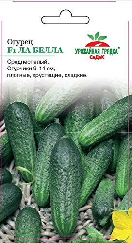 Russian Cucumber La Bella F1 c/o Mr. (Action) (  9-11sm, Small Thorns, 4,8-6kg / sq.m, Dense, Sweet, for conserving and Pickles). Euro 0.2