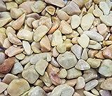 Exotic Rose Pebbles (1.65lbs Bag) 7-15mm Beach Pebble Stone Rocks / Polished Pebbles Terrarium, Aquarium, Decoration, Landscape, Succulents (Outdoor & Indoor), Home / Garden, Vase or Pot Fill